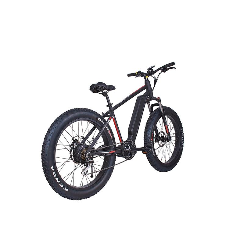 LEEM 2220-1 Elektrischer Mountainbike-Hochleistungsmotor